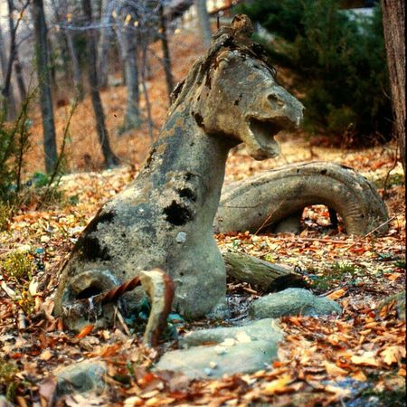 Outdoor Sculpture Sea Horse Sculpture Half Buried In Ground Very Cool ✌ Old Statue Stone Statue Walking In The Woods Fresh On Eyeem