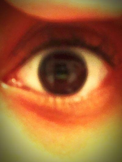 My eyes Brown Eyes Human Eye Eyesight Human Body Part Eyeball Sensory Perception One Person Iris - Eye Eyelash