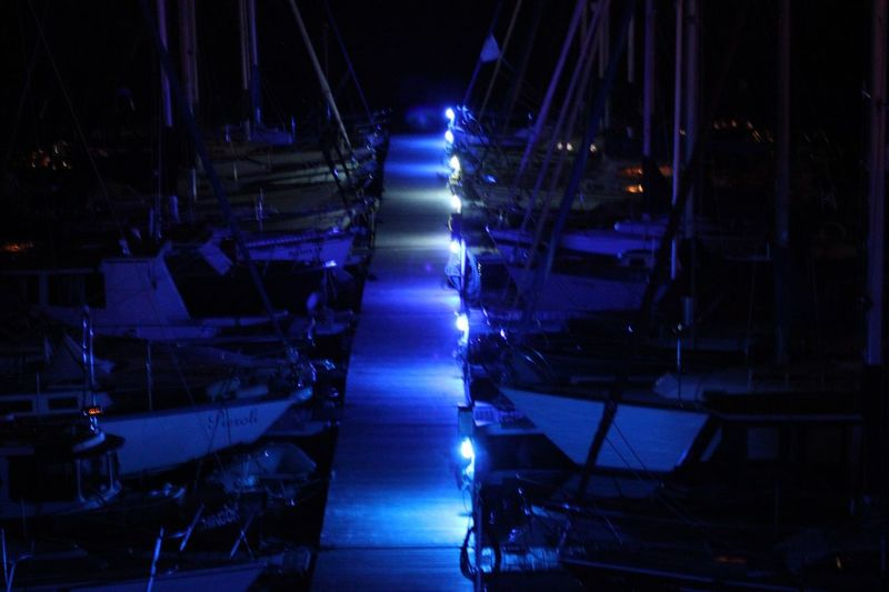 Marina Night