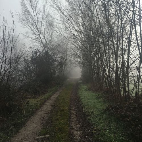 Fog First Eyeem Photo