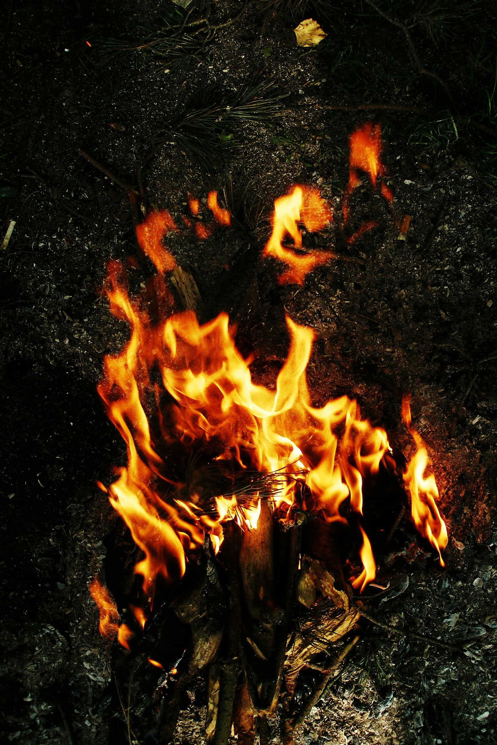 burning, flame, heat - temperature, fire - natural phenomenon, bonfire, firewood, glowing, campfire, fire, orange color, heat, night, motion, close-up, high angle view, outdoors, no people, wood - material, field, nature