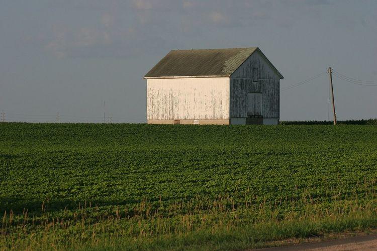View of rural landscape against sky