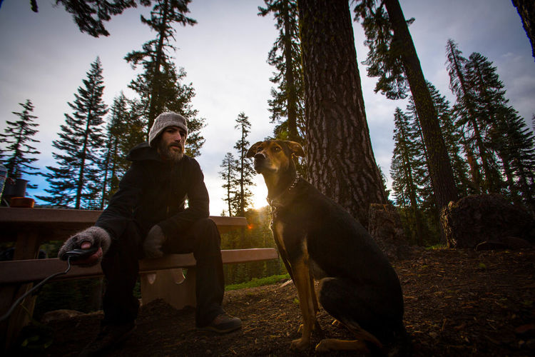 Camping with the pooch... Camping Camping With My Dog Campinglife Dog Domestic Animals Hiking Leisure Activity Lifestyles Looking At Camera Me And My Dog Nature One Animal Outdoors Pet Owner Pets Togetherness Tree