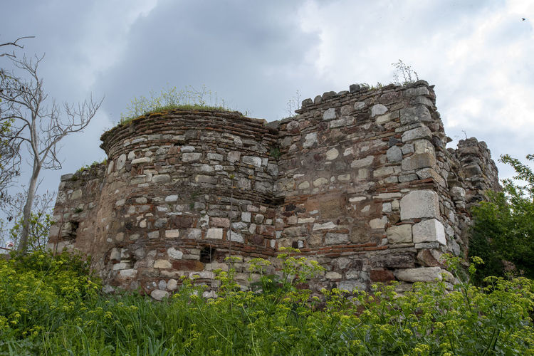 Sky Plant Nature History Architecture No People Cloud - Sky Low Angle View Tree Built Structure Solid Day The Past Ancient Building Exterior Outdoors Stone Material Building Land Wall Stone Wall Ancient Civilization Abbey Ruined