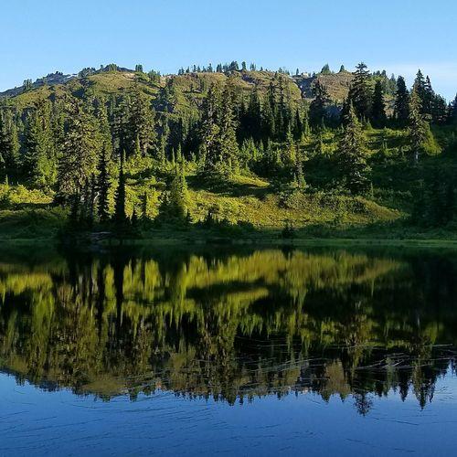 Washington State Pacific Northwest  Cascadia Cascadiaexplored Pinetrees Lake View LakeReflection Lakereflections Americathebeautiful