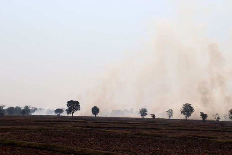 The smoke from burning rice straw causes air pollution, causing pm2.5 dust.