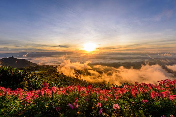 sunrise at high