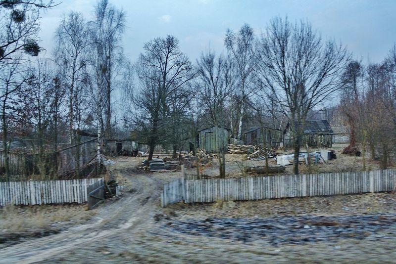 Bauernhof Baum Cold Temperature Day Farm No People Outdoors Tor Tree Trzoska Ukraine Water