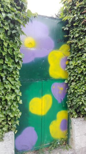 Door Decoration Green Street Photography Stret Art Torbole Lake Italy Colors Hello World No Edit/no Filter No Filters  Romantic