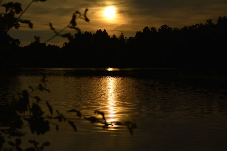 Hanging Out Taking Photos Borner See Eye4photography  Sky And Clouds Sunset Color Photography Idyllic Nikonphotography Nikon D5200 Silhouette Nature Photography Water Reflections Golden Hour 43 Golden Moments
