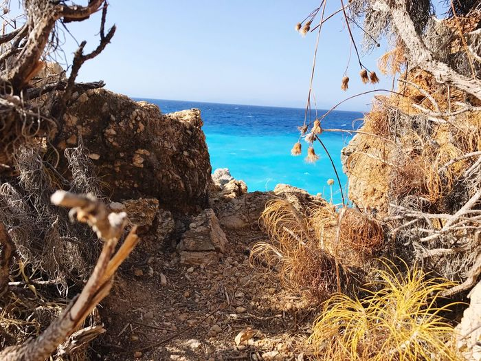 Oltre.... il mare Sea Nature Horizon Over Water Water Sky Beach Outdoors No People Beauty In Nature Clear Sky Scenics Day Tree Lefkada Greece