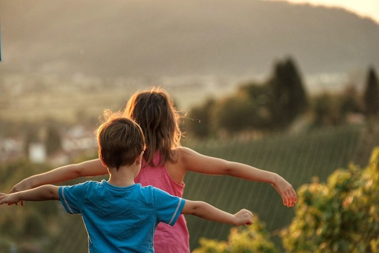 Rear View Of Siblings With Arms Outstretched Standing On Field