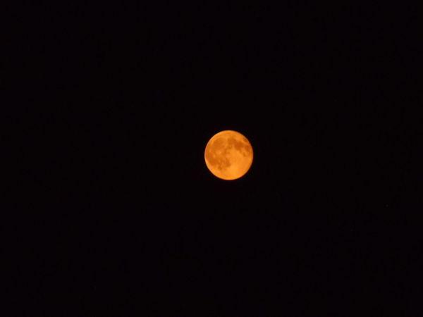 Clear Night Sky Darkness Full Moon Harvest Moon Man In The Moon Night Orange Night Photography Nofilter No Stars