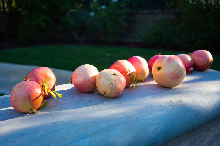 Close-up of apples on retaining wall