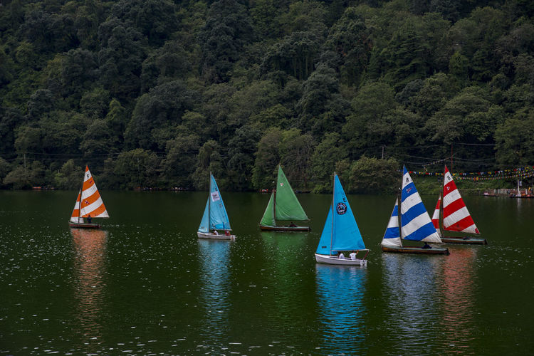Sailboat in lake against trees