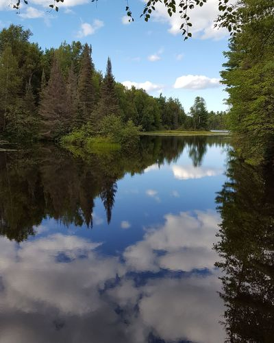 Beautiful scenery in northern Wisconsin. Spider Lake, Mercer WI Up North Northern Wisconsin Mirror Image Serenity Great Outdoors Wisconsin Enjoying Life Sky And Clouds Clouds Pine Trees Beauty In Nature EyeEm Nature Lover Idyllic Picture Perfect