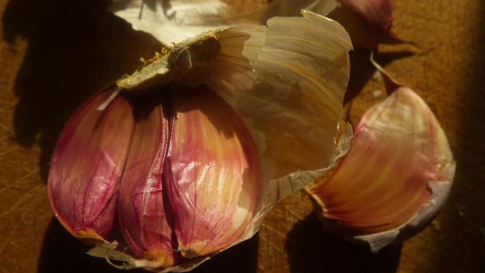 Garlic Bulbs Garlick Foodfromabove Nofilter