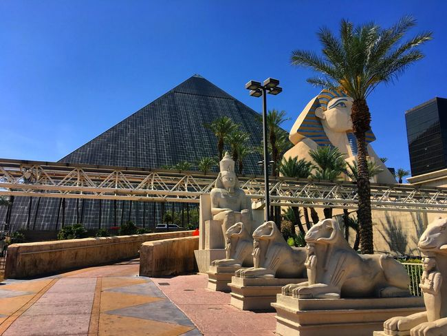 Statue Sculpture Architecture Built Structure Palm Tree Art And Craft Building Exterior Human Representation Clear Sky Tree Outdoors Low Angle View Day Sky Blue No People City EyeEm Best Shots Eye4photography  EyeEm Nature Lover EyeEmNewHere Travel Luxor Las Vegas Bizimlegezin