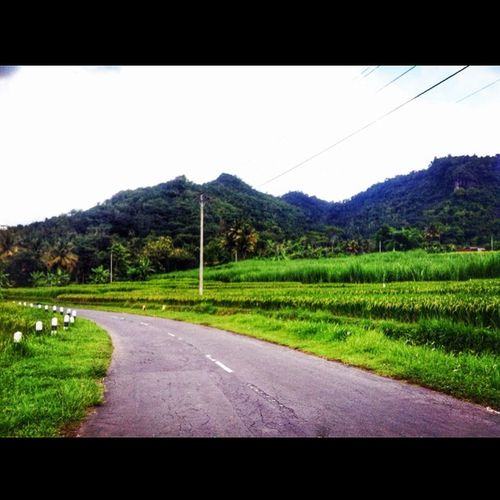2 gunung, jalan, tiang listrik, padi. Ingat gambar waktu TK dulu? Hahaha. Nostalgia Morning Montain  Road Street Field Fresh Rice Childimage Image Kidsimage Mesastila_Vacation Hijau Holiday Seger Suroloyo Puncak  Puncak4gunung Puncaksuroloyo INDONESIA Iphonesia Yogya Yogyakarta Nature Nature Lover naturelovers holiday hijau terrace travel riceterrace