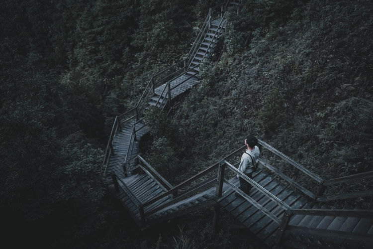 My Best Photo Architecture Nature Real People Men Hiking HongKong Tree Day Outdoors Forest Staircase Railing Plant Land Lifestyles Full Length High Angle View One Person Steps And Staircases Built Structure EyeEm Best Shots EyeEm Nature Lover EyeEm Selects Beauty In Nature