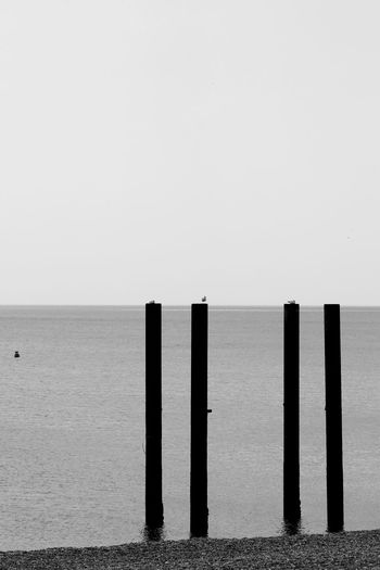 Four Posts Black & White Brighton Pier Decay Derelect Beach Blackandwhite Clear Sky Day Horizon Over Water No People Outdoors Posts Scenics Sea Tranquil Scene Tranquility Water