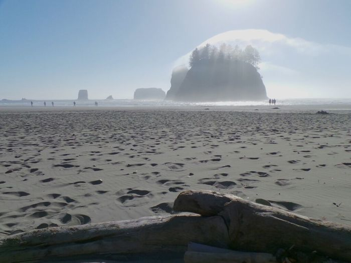 Olympic Peninsula Beach Outcrops Outcropping Sand Beach Scene  Fog Sandy Sunny Beach Photography Foggy People On The Beach Walking On The Beach Footprints In The Sand Outdoor Photography Sunstream Rocky Beach Scenic View EyeEm Nature Lover Sunbeams Faded Nature The Great Outdoors - 2017