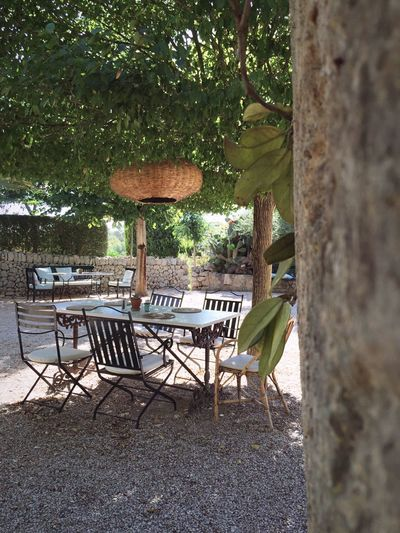 Lovelyplace Holidaydestination Holiday Argoturismo Gardening Igersmallorca Mediterrane Lunch Breakfast Break NatureTable Tree Chair Empty No People Growth Nature Day Outdoors Beauty In Nature Mallorca