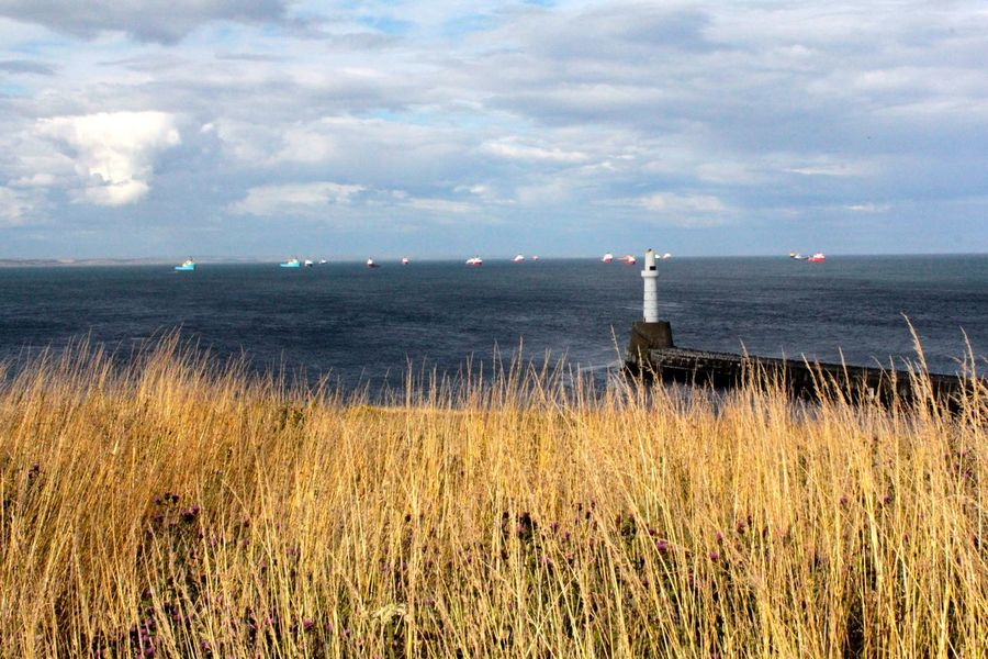 Aberdeen Aberdeenshire Boats Clouds And Sky Lighthouse Ocean View Scotland Wheat Field Beauty In Nature Picturesque Remote Horizon Over Water Grass Travel Photography Water EyeEm Nature Lover Sea And Sky Seaside Sea View