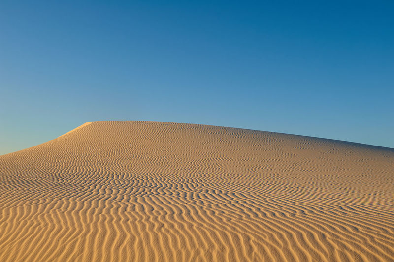 Wind eroded sand dune and sky Arid Climate Beauty In Nature Blue Clear Sky Copy Space Day Desert Environment Landscape Nature No People Outdoors Sand Sand Dune Scenics Sky Tranquil Scene Tranquility