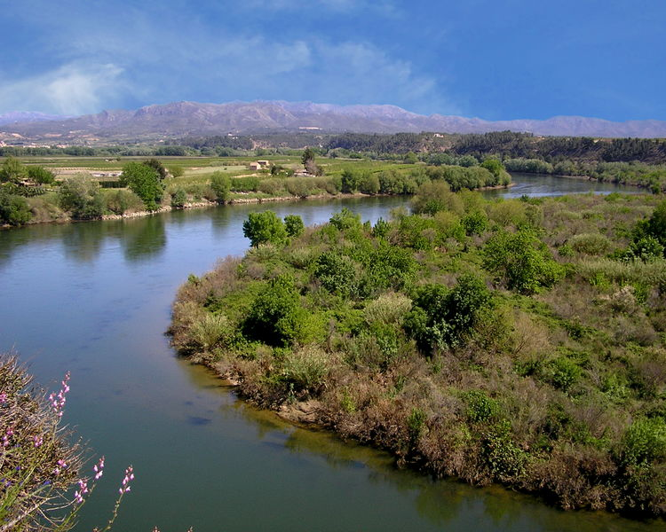 View of the Ebre River in Miravet, Spain Beauty In Nature Blue Calm Cloud - Sky Day Distant Ebre River Green Color Growth Idyllic Majestic Miravet, Spain Mountain Nature Non-urban Scene Outdoors River Scenics Sky Tranquil Scene Tranquility Travel Destinations Tree Water Waterfront