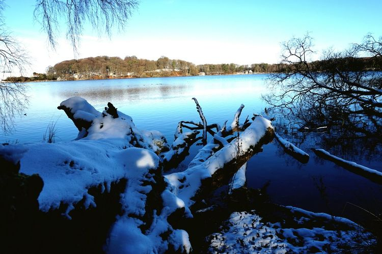 winters day EyeEmNewHere Eye4photography  Eyemphotography EyeEm Selects White Lake Water Cold Temperature Nature Winter Reflection No People Ice Outdoors Tranquility Landscape Scenics Day Beauty In Nature Snow Sky Tree Bird