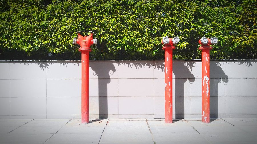 Red fire hydrant against trees