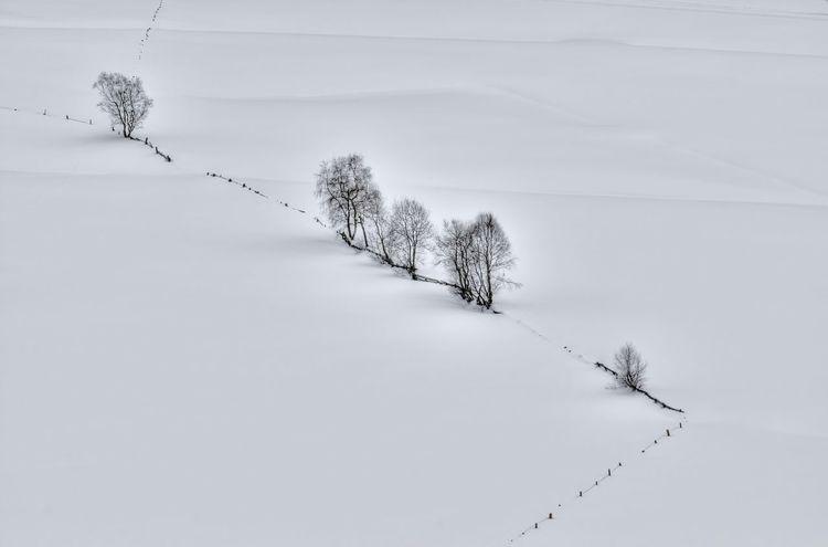Tiefer Winter. Deep winter. Winter Snow Nature Tree Lonely Cold White Schnee Verschneit Kalt Weiss Einsam EyeEm Nature Lover Cold Temperature Landscape Beauty In Nature