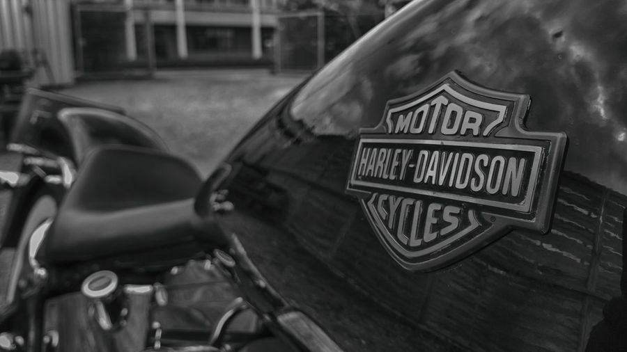 Blackandwhite Close-up Gastank Harley Davidson Harley-Davidson Harley-Davidson Bar And Shield Motorcycle No People Outdoors