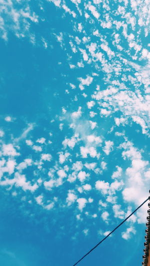Low Angle View Cable No People Cloud - Sky Sky Outdoors Day Blue Nature Telephone Line Beauty In Nature Life High Angle View Summer City Lifestyles