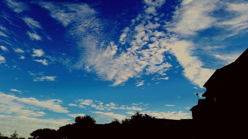 Safe within your skies. Enjoying Life Hello World Beautiful Blue Sky☁ Naturelovers Blue Sky Freedom Liberation