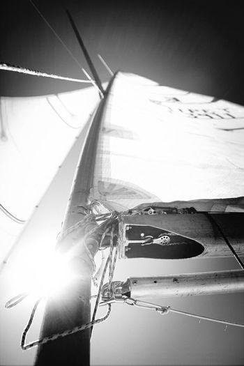 Sailing Enjoying Life Travel Photography Black And White