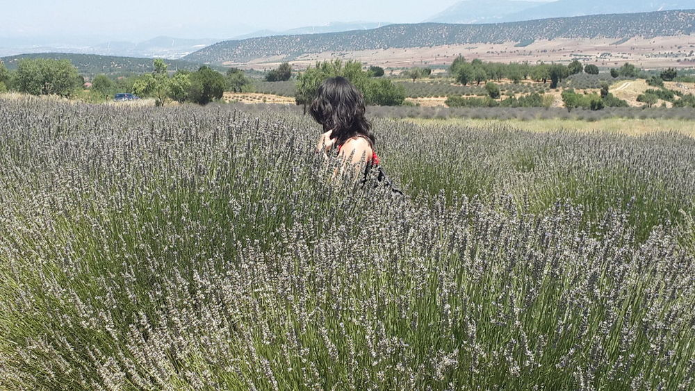 Sessizce çekip gidiyorum şimdi, sessiz ve kimliksiz Belki yine gelirim, sesime ses veren olursa bir gün... (Ahmet Telli) Lavender Fields Myself Meditation Lavender Alone In The City  Middle Of The Lavender Fields Beautiful Nature Ineedamiracleformylostsoul Eternity And A Day Capture The Moment Untold Stories Nature Nature Is Art Nature's Diversities Eye4photography  EyeEm Best Shots Feeling Travel Travel Photography Nature Photography On The Way Landscape EyeEm Gallery Silhouette