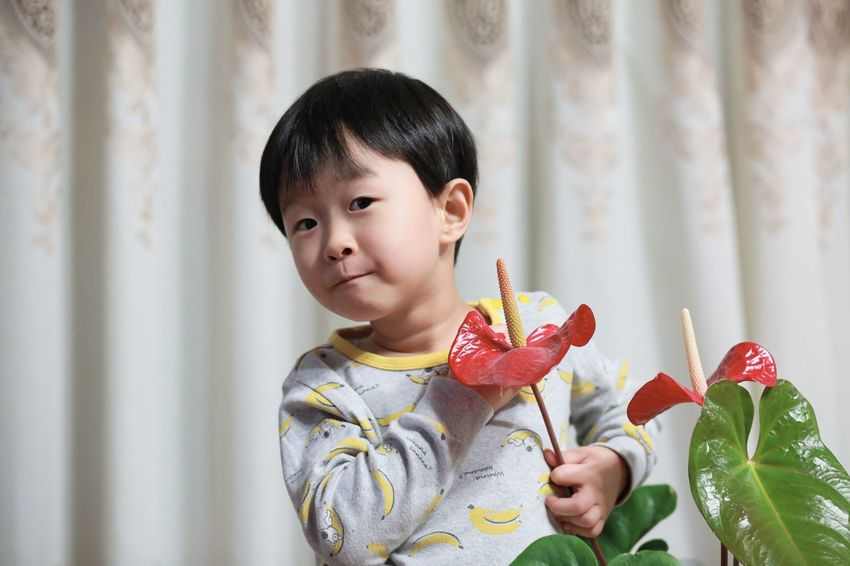 Details Of My Life EyeEm Nature Lover EyeEmNewHere Hello World Home Plant Taking Photos Boy Childhood Close-up Curtain Cute Enjoying Life Flower Flower Head Freshness Front View Human Body Part Indoors  Kid Lifestyles One Person People Playful Portrait This Is Masculinity