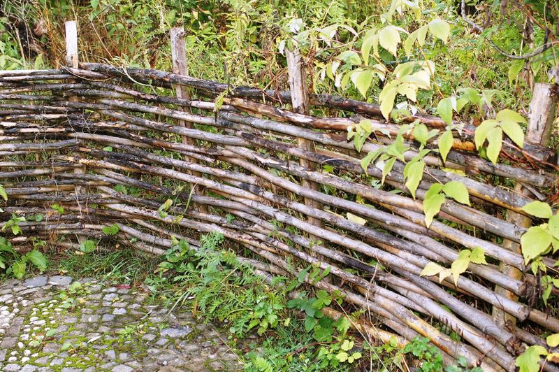 fence handmade selbstgemachter Zaun Day Fence Handmade Forest Growth Hand Made Fence Land Nature No People Outdoors Plant Selbstgemachter Zaun Tranquility Tree Weidenzaun Wicker Fence Wood - Material