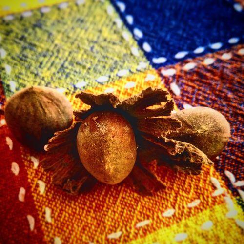 Bellezza della Natura Nocelle Frutta Secca Profumi D'autunno Fruit Close-up Food And Drink Orange - Fruit
