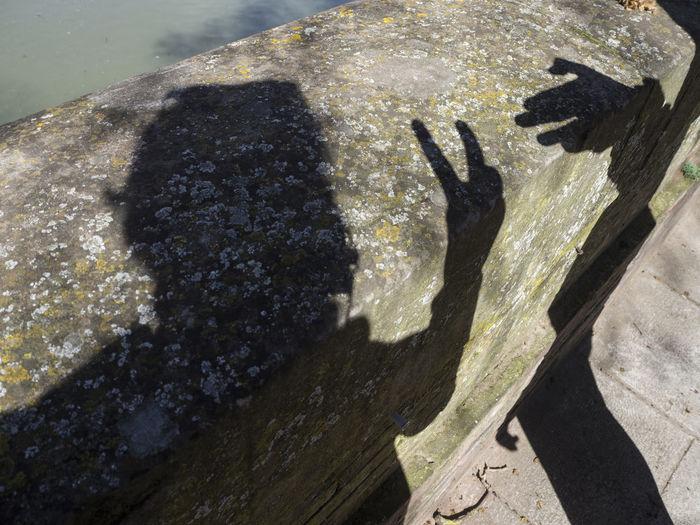 High angle view of shadow on rock