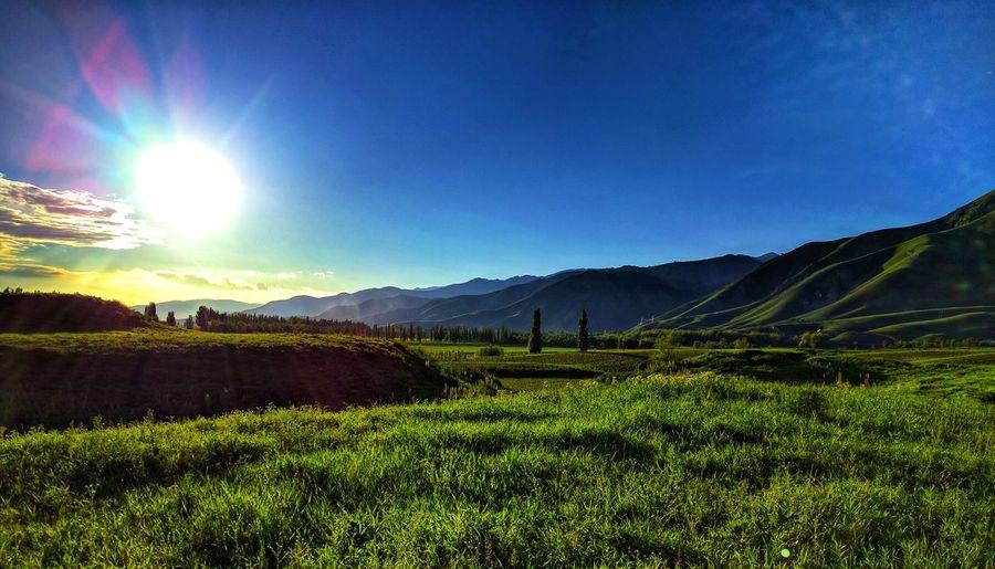 Hills Natural