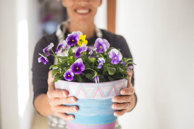 Midsection of woman holding flower pot at home