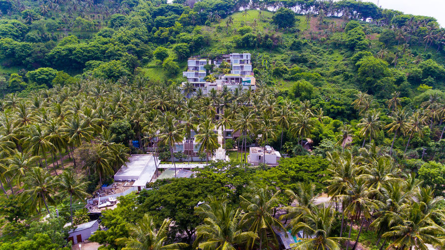 Looks tropical hotel in the middle of green mountains Plant Tree Architecture Growth Building Exterior Built Structure Day Nature High Angle View Green Color No People Scenics - Nature Building Foliage City Beauty In Nature Outdoors Lush Foliage Land Water Lombok Lombok-Indonesia Hotel Hotel View Resort