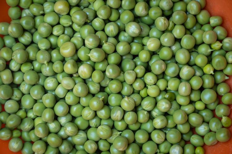Full frame shot of green tomatoes