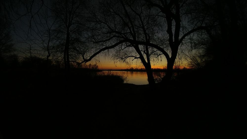 Sunset Nature Silhouette Tree Reflection Water Scenics Sky Outdoors Beauty In Nature Branch River Tranquil Scene Idyllic Tranquility Bare Tree Landscape No People Sun