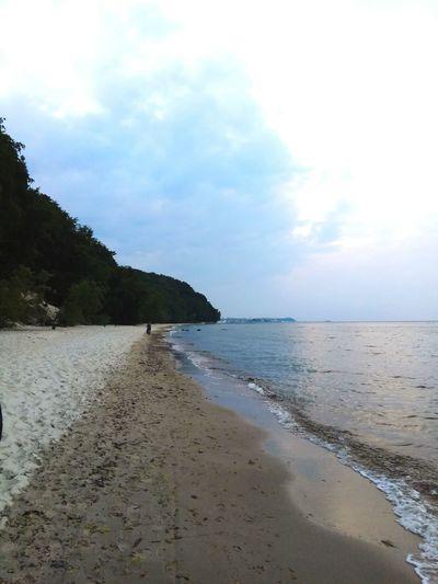 Water Sea Beach Tree Sand Summer Swimming Sand Dune Beauty Sky