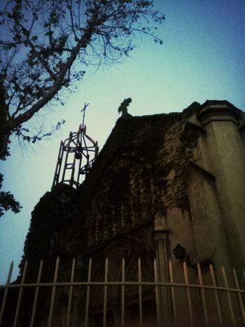 Monuments Iglesia Plants