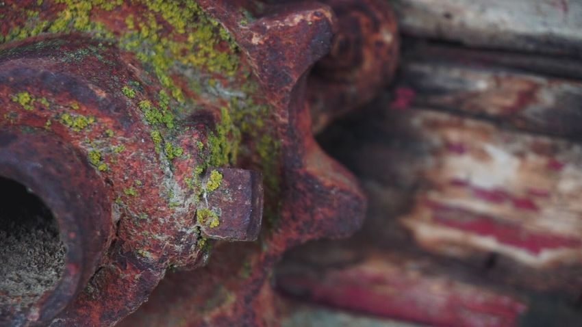 Backgrounds Wood - Material Antique Farm Machinery Equipment Gears Old-fashioned Rusty Close-up Metal Weathered Antique Mossy Old Farm Machinery Agricultural Machinery
